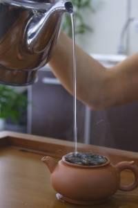 cách pha trà ô long ở bước châm nước vào ấm trà