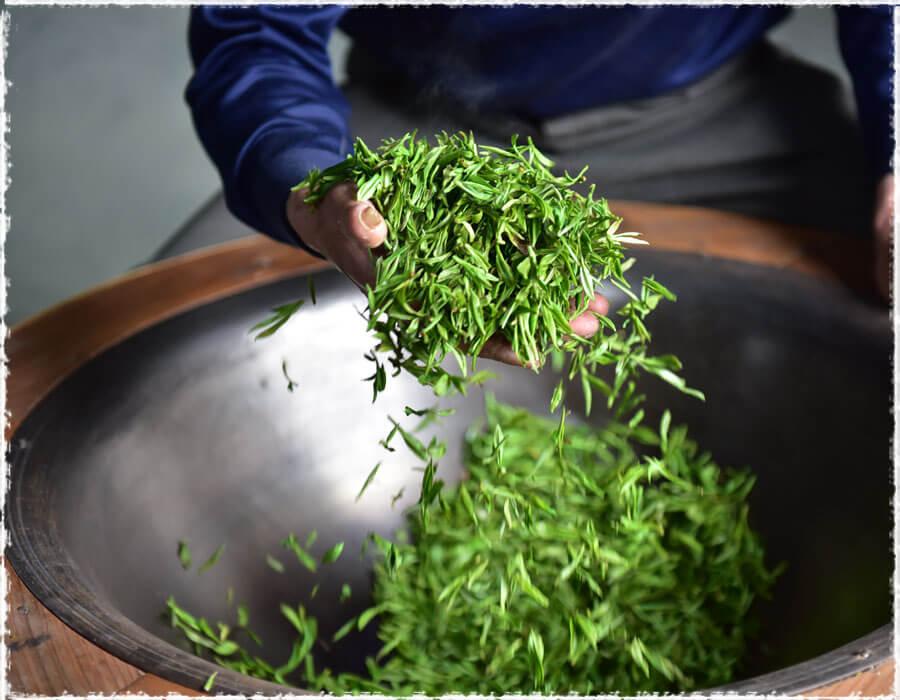 Sản xuất trà