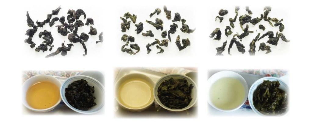 cC3A1c loE1BAA1i trC3A0 ThiE1BABFt quan C3A2m 1 Các loại trà Thiết Quan Âm và cách phân loại