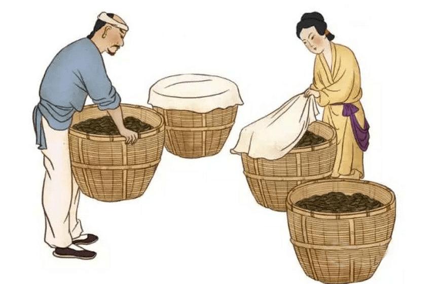 khâu chế biến hồng trà