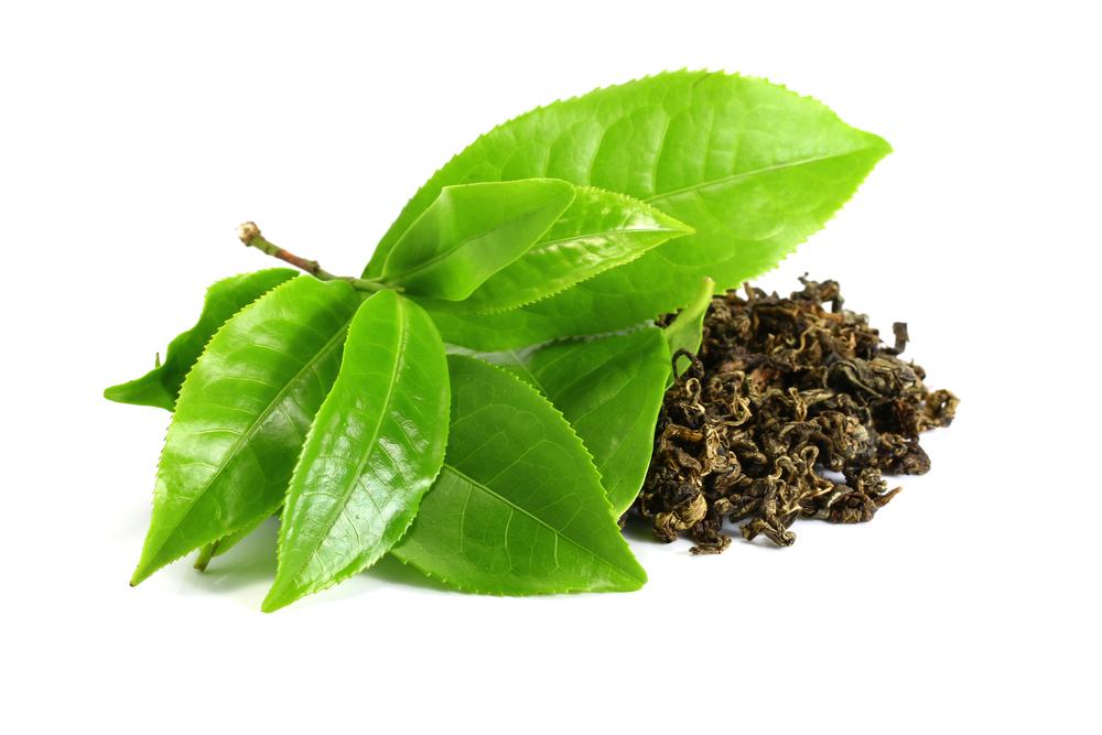 trà có gì tốt cho sức khỏe
