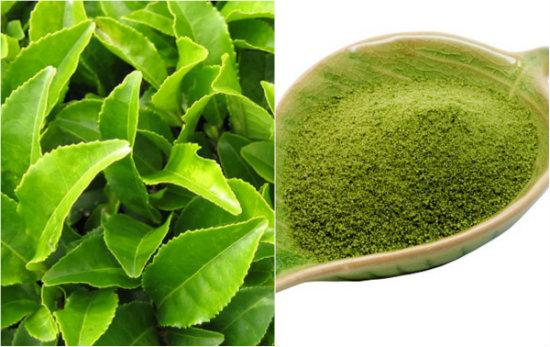 Tác dụng của trà xanh và bột trà xanh