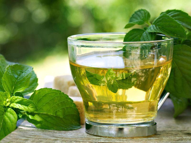 tra bac ha Những loại trà thảo mộc nên sử dụng mỗi ngày