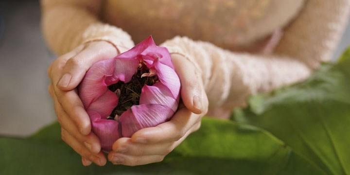 van hoa tra va nghe thuat thuong tra cua nguoi viet 3 Văn hóa trà và nghệ thuật thưởng trà của người Việt
