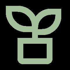 plant line Về Hita Tea